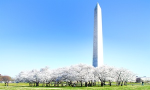 Up to 62% Off Tour of Washington DC from DC Nation Tours at DC Nation Tours, plus 3.0% Cash Back from Ebates.