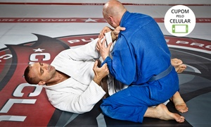 Pride Way Academia: Pride Way Academia - Itajaí: 1, 3 ou 6 meses de aulas de jiu-jitsu, wrestling submission ou boxe chinês