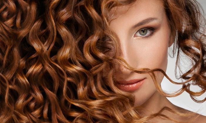Gina at Headlines Hair Studio - Ward 2: Haircut with Style or Highlights from Gina at Headlines Hair Studio (Half Off)