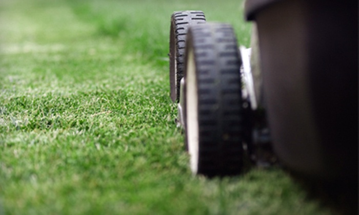 Lynch Turf and Irrigation - Omaha: Lawn-Care Services from Lynch Turf and Irrigation (Up to 61% Off). Four Options Available.