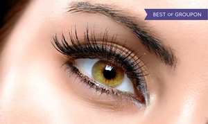 Vlashed: Full Set of Eyelash Extensions with Optional Two- or Three-Week Touchup Session at V Lashed (Up to 59% Off)