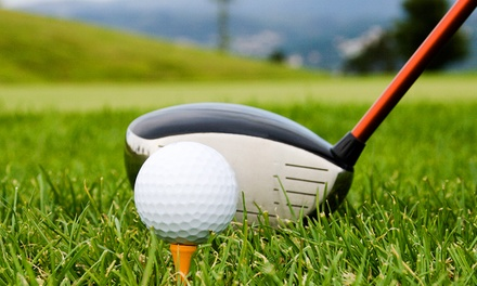 One-Hour Golf Lesson with PGA Pro