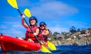 Bike & Kayak Tours: 90-Minute La Jolla Double-Kayak Rental or Tour for Two from Bike & Kayak Tours (58% Off)