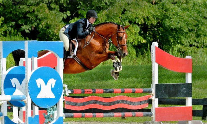 Century Mill Stables - Bolton: One-Hour Private Horseback-Riding Lesson for One or Semiprivate Lesson for Two at Century Mill Stables (Up to 54% Off)