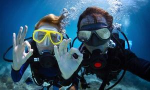 Galapago Escuela de Buceo: Desde $209 por clase de bautismo de buceo para uno o dos en Galapago Escuela de Buceo. Elegí en 14 sucursales