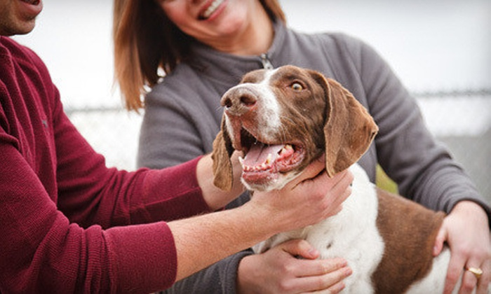 Arizona Humane Society - Multiple Locations: $25 for Full Adoption Fees for One Pet at Arizona Humane Society (Up to $160 Value)