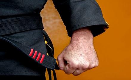4 Weeks of Karate or Jiu-Jitsu Classes or 90-Minute Kids' Party Package at Ultimate Karate & Jiu-Jitsu (Up to 69% Off)