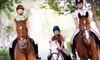 Slippery Brook Enterprise - Keystone: One, Three, or Five Private Horseback-Riding Lessons at Slippery Brook Enterprise (Up to 73% Off)