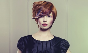 Artist Salon and Gallery - Kimmie: Haircut, Blow-Dry, and Optional Color or Highlights at Artist Salon and Gallery – Kimmie (Up to 56% Off)