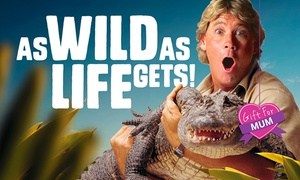 Australia Zoo: Steve Irwin's Australia Zoo: 1-Day or 2-Day Child, Adult or Pensioner Tickets with Bonus Discounts (Up to $51 Value)