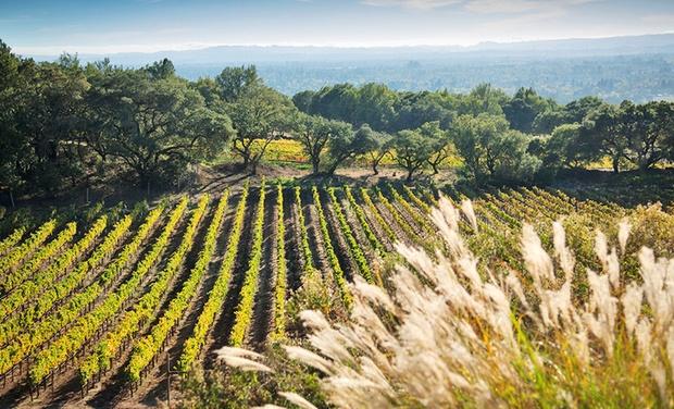 Best Western Plus Wine Country Inn Suites in Santa Rosa CA