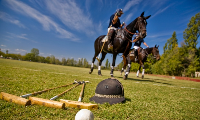Arizona Polo Association - Desert View: A Polo Lesson from Arizona Polo Association  (50% Off)