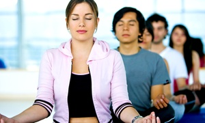 Zag Fitness: 8 or 16 Fitness and Yoga Classes at Zag Fitness (Up to 83% Off)