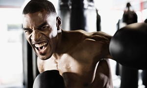Scarberian Boxing: 10 or 20 Youth or Adult Boxing Fitness Classes at Scarberian Boxing (Up to 87% Off)