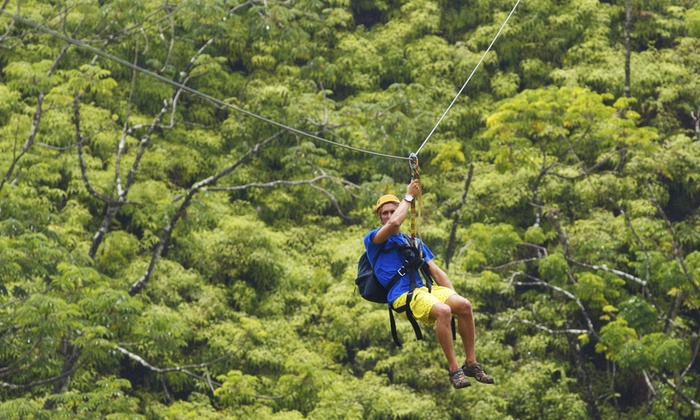 Aerial Adventures - Lake Geneva: Zipline Tour or Full Adventure Package for Two or Four at Aerial Adventures (Up to 51% Off)