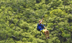 Aerial Adventures Lake Geneva: Zipline Tour or Full Adventure Package for Two or Four at Aerial Adventures (Up to 53% Off)