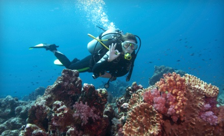 One basic dive class with certification and equipment rental