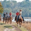 50% Off Middleton Place Equestrian Center Trail Ride for Two