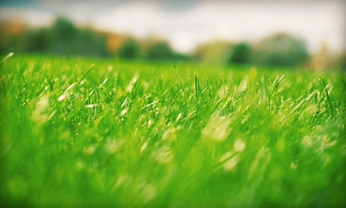 Lawn Pro's - Chattanooga: Fertilization or Aeration for Lawn Up to 6,000 Square Feet from Lawn Pro's (Up to 52% Off)