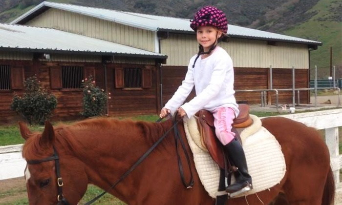 Jeanette Arnaout Training - Lightning Stables: One or Three 90-Minute Horsemanship Lessons at Jeanette Arnaout Training (56% Off)