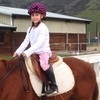 56% Off Horsemanship Lessons