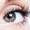 Up to 44% Off Eyelash Extensions and Refills
