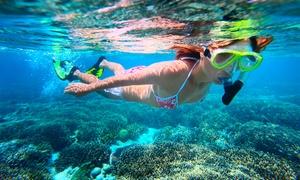 Au delà Plongée: 1/2 journée de snorkeling et ballade en bateau solo ou en duo avec palmes,masque et tuba dès 29,90€ avec Au delà Plongée