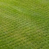 Up to 25% Off Aeration from Lawn Doctor