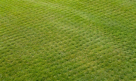 Lawn Aeration with Optional Power Seeding on Up to 5,000 or 10,000 Square Feet from Lawn Doctor (Up to 25% Off)