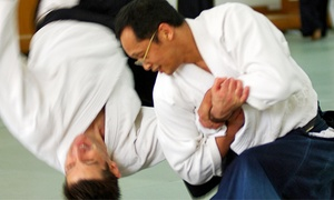 Midwest Aikido Center: Eight Introductory Aikido Classes for One or Two on July 5 or Sept. 6 at Midwest Aikido Center (Up to 58% Off)