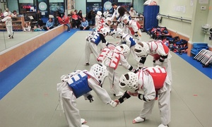 Gold Medal Taekwondo Academy: Four Weeks of Unlimited Martial Arts Classes at Gold Medal Taekwondo Academy (90% Off)