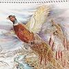 $5 for a 2014 Wild-Bird Art Calendar