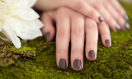 One or Three Shellac Mani or One Classic Mani and Spa Pedi with Sole Stutsman at Euphoria Salon (Up to 54% Off)
