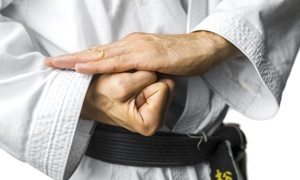 Ryu Te Karate Of Sugar Land: $29 for $95 Worth of Martial-Arts Lessons — Sugar Land Ryu Te