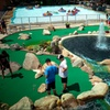 Up to 42% Off Mini Golf at Casey's Amusement Park