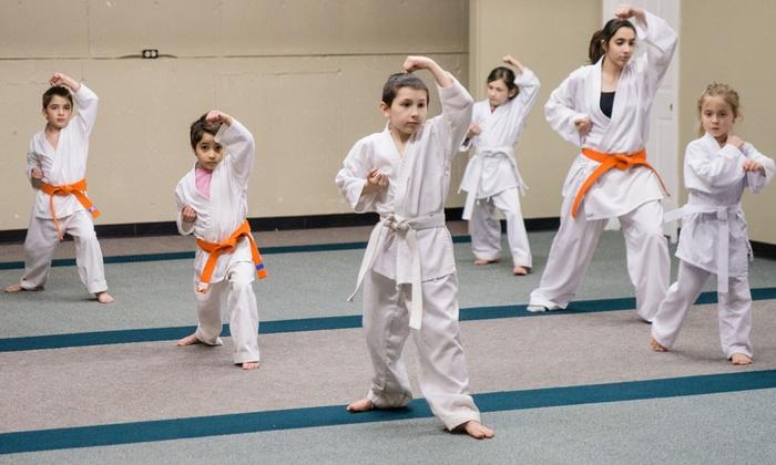 Meikyo Dojo, LLC - Hudson: $39 for $125 Worth of Martial-Arts Lessons — Meikyo Dojo