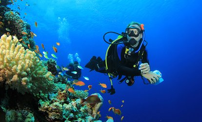 $99 for 24 Hours of Level One Diving Lessons at Le Monde du Silence (A $380 Value)