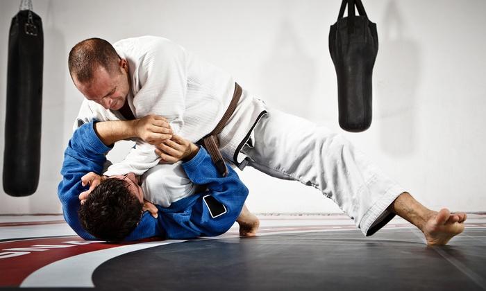 MMA Den - London: Brazilian Jiu-Jitsu or Wrestling: Five or Ten Classes at MMA Den (Up to 81% Off)