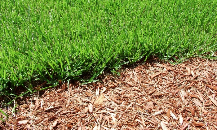 Pine Ridge Landscaping & Tree Services - Minneapolis / St Paul: $199 for 3 Cubic Yards of Shredded Mulch from Pine Ridge Landscaping & Tree Services ($400 Value)