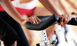 Go Legs Cycle Studio, Inc.: Four or Eight Cycling Classes at Go Legs Cycle Studio, Inc. (Up to 54% Off)