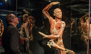 "Body Worlds: ""Body Worlds"" Human-Anatomy Exhibit, January 28–April 3"