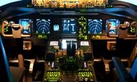 30 bis 90 Minuten Erlebnisflug im Boeing 737 Flugsimulator im Pilot Flight Center (bis zu 55% sparen*)
