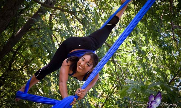 Elevate Vertical Fitness - Cedar Rapids: Two Weeks of Aerial Fitness Classes at Elevate Vertical Fitness (64% Off)