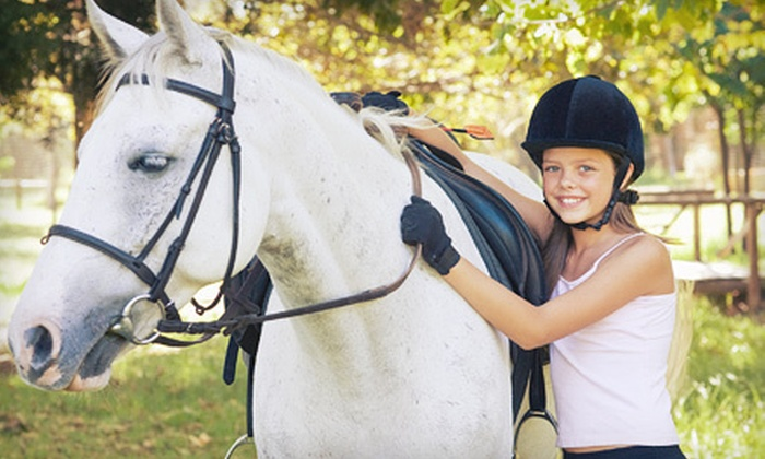 Hoofprinted Hearts Farm - Keystone: One or Two 60-Minute Private Horseback-Riding Lessons at Hoofprinted Hearts Farm in Odessa (Up to 56% Off)