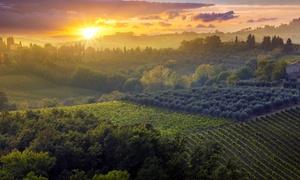 Toscana da amare