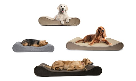 Orthopedic Luxe Lounger Contour Pet Bed