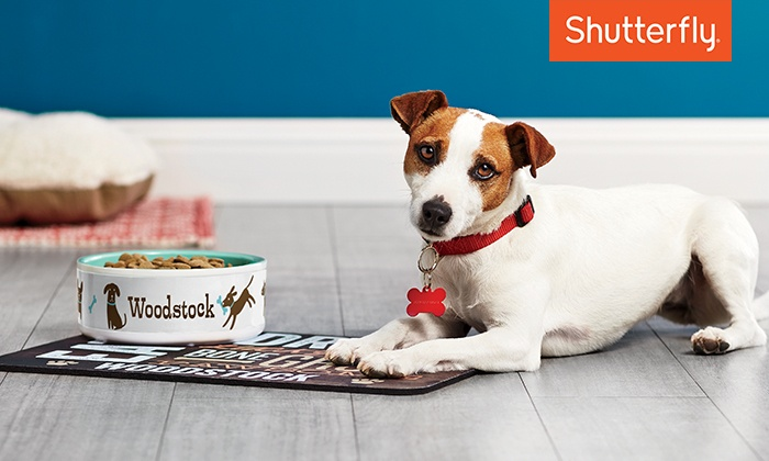 Shutterfly: Customized Pet Bowl from Shutterfly (Up to 50% Off). Two Sizes Available.