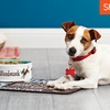Half Off Customized Pet Bowls from Shutterfly