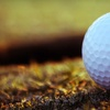 Up to 71% Off Golf Lessons