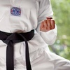 Up to 63% Off Classes at Chang Lee's Taekwondo Club USA